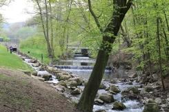 Eine wunderbare Parklandschaft führt zum Veranstaltungsort der HfM Detmold mit dem 88. BachFest 2013 Detmold
